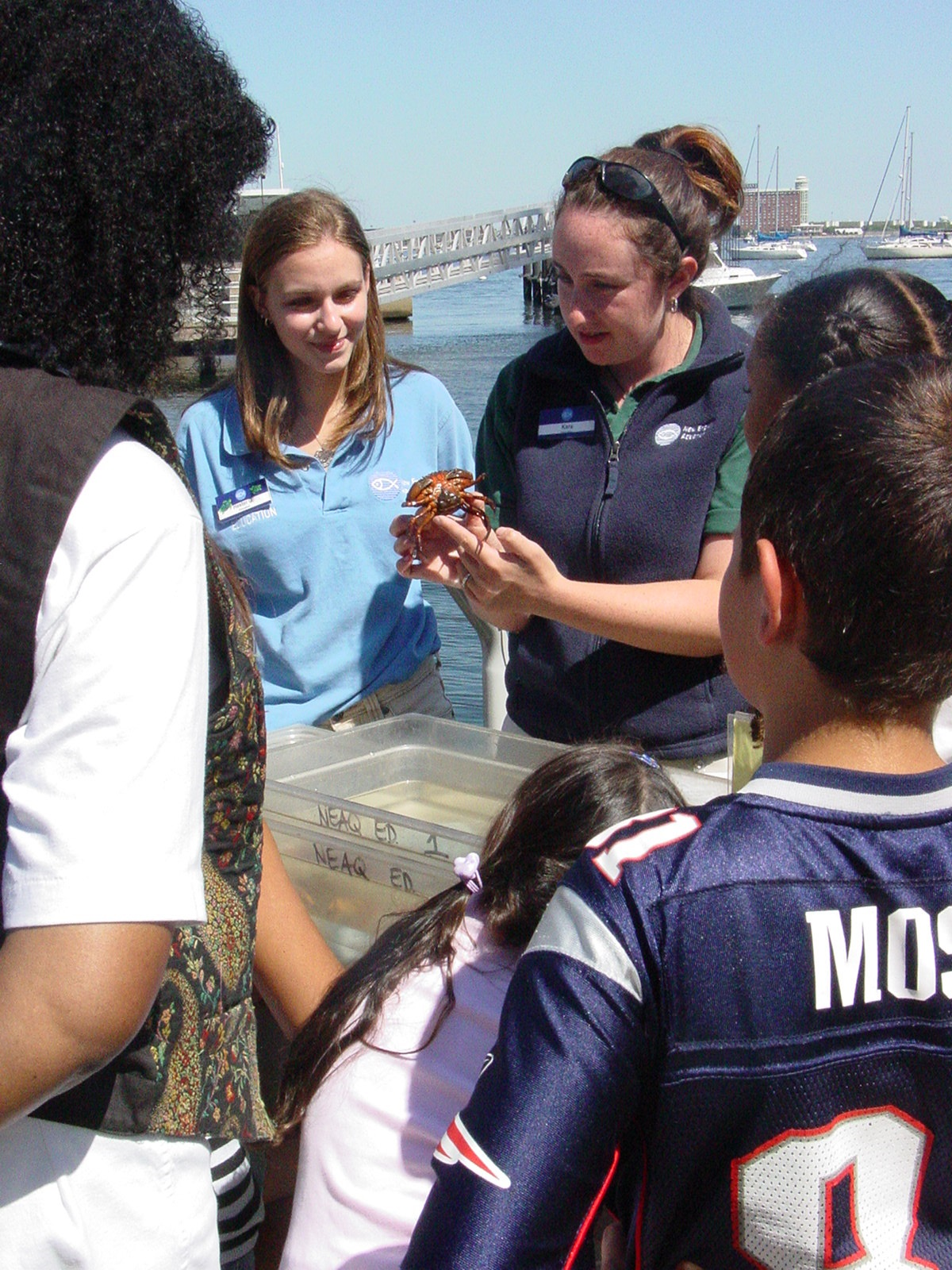 Citizen Science on the Harbor!
