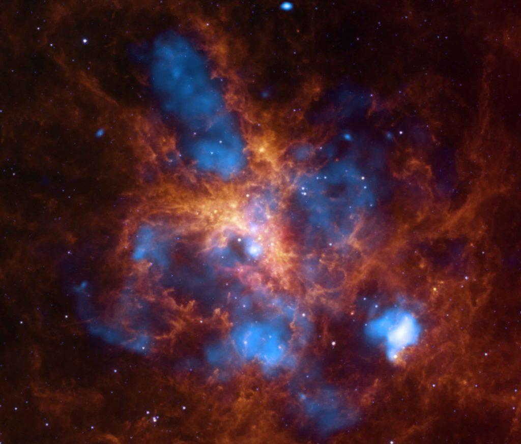 Tarantula Nebula: The Growing Tarantula Within