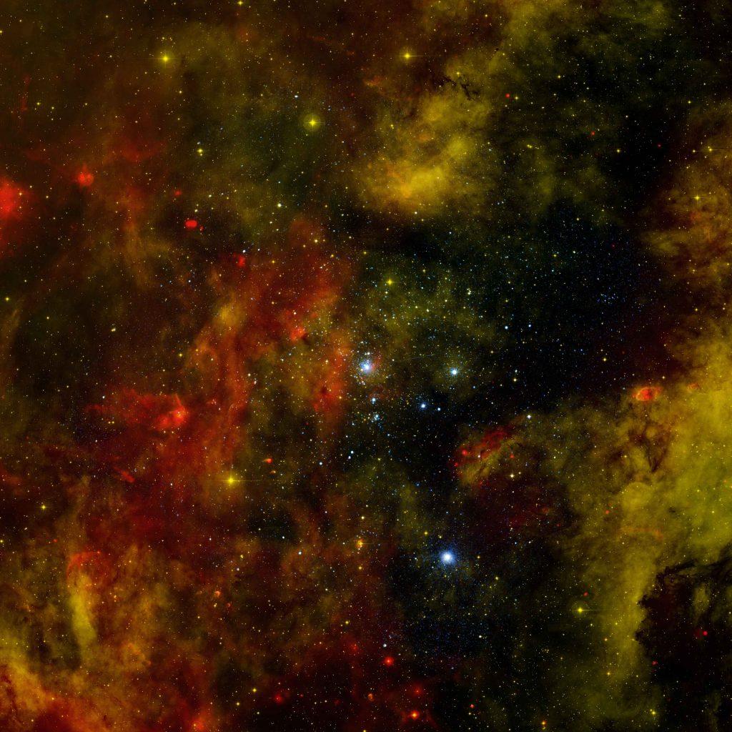 Cygnus OB2: Probing a Nearby Stellar Cradle
